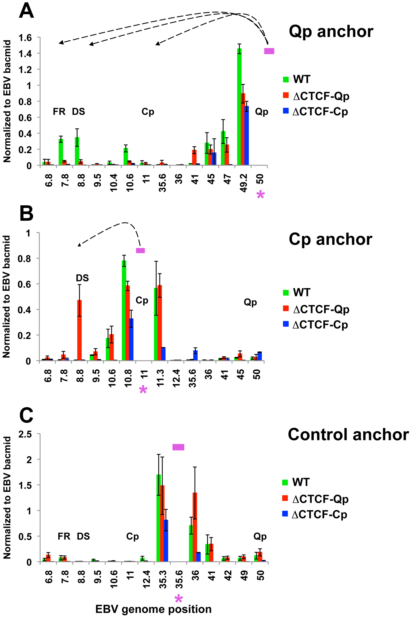 Quantitative 3C analysis confirms changes in chromatin architecture in ΔCTCF-Qp and ΔCTCF-Qp compared to Wt EBV bacmid.