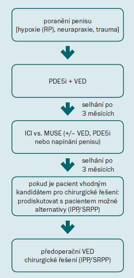 Schéma 2. Protokol pro rehabilitaci penisu.