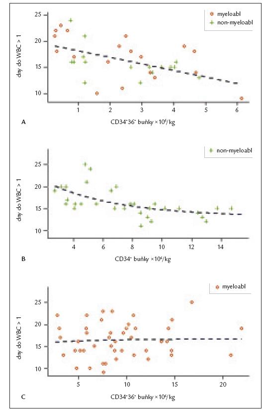 Přihojení štěpu v linii leukocytů. Každý bod identifikuje jednoho pacienta. Osa x – dávka transplantovaných buněk na kg hmotnosti příjemce, osa y – dny do přihojení v leukocytech ode dne transplantace. Přerušovaná křivka představuje regresní model přihojení příslušné populace buněk.  A: Závislost rychlosti přihojení leukocytů na dávce transplantovaných CD34<sup>+</sup>36<sup>+</sup> buněk pro obě skupiny pacientů (p < 0,001).  B: Vliv dávky transplantovaných CD34<sup>+</sup> buněk na přihojení leukocytů u nemyeloablativní skupiny. Korelace mezi množstvím CD34<sup>+</sup> buněk v transplantátu a rychlostí přihojení leukocytů je signifikantní (p < 0,001).  C: Vliv dávky transplantovaných CD34<sup>+</sup> buněk na přihojení leukocytů u myeloablativní skupiny. Dávka CD34<sup>+</sup> buněk neměla signifikantní vliv na rychlost přihojení leukocytů.