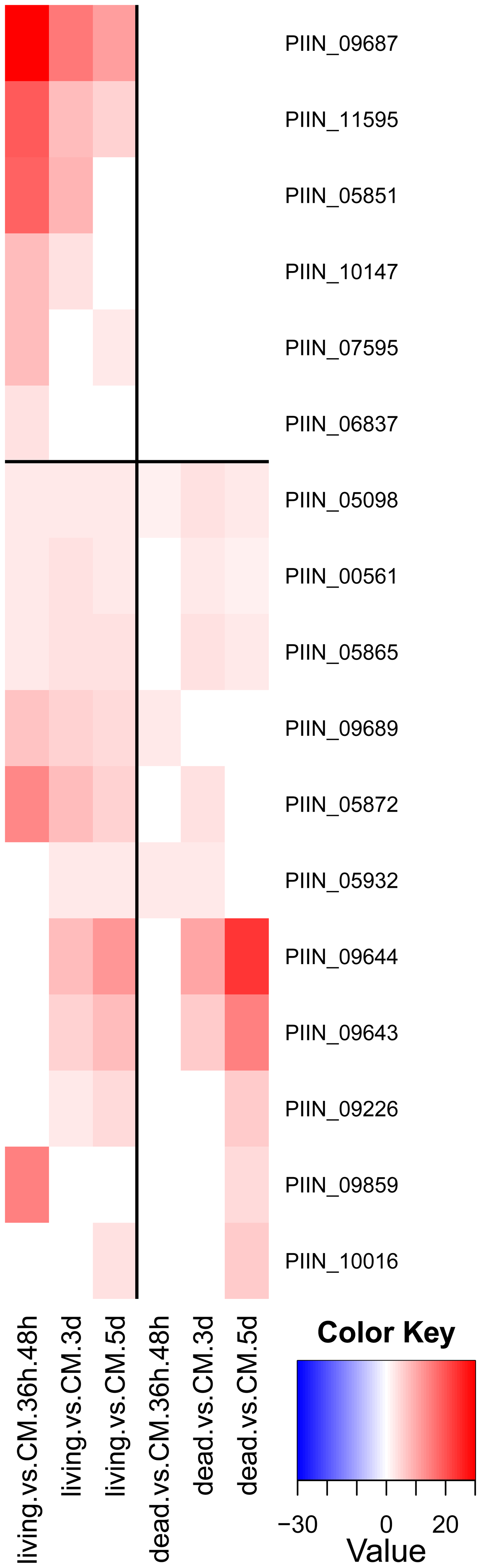<i>P. indica</i> DELD proteins induced during colonization of barley roots (shown are 17 from the 29 identified DELD proteins).