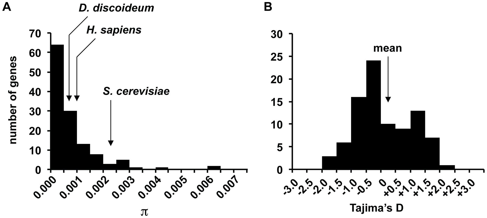 Distribution of nucleotide variation and Tajima's D in gene fragments.