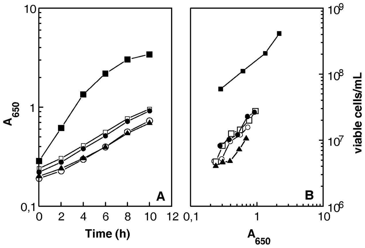 <i>D. radiodurans</i> cells devoid of <i>recA</i>, <i>recF</i>, <i>recO</i>, or <i>recR</i> genes show reduced plating efficiency.