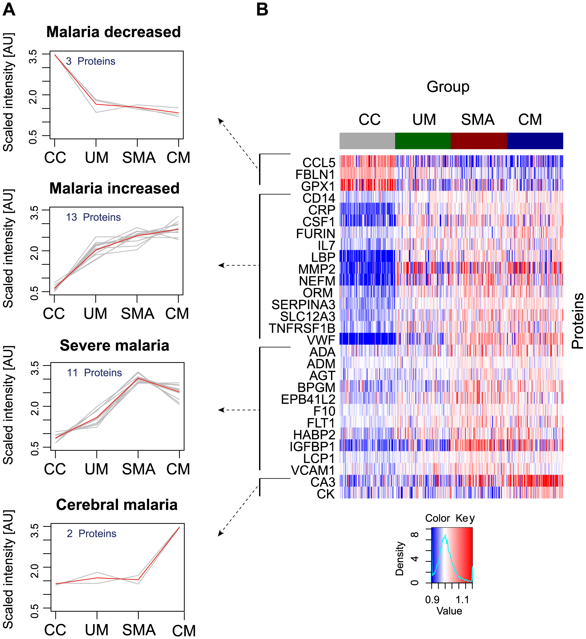 Identification of 29 human proteins discriminating community controls and malaria cases.