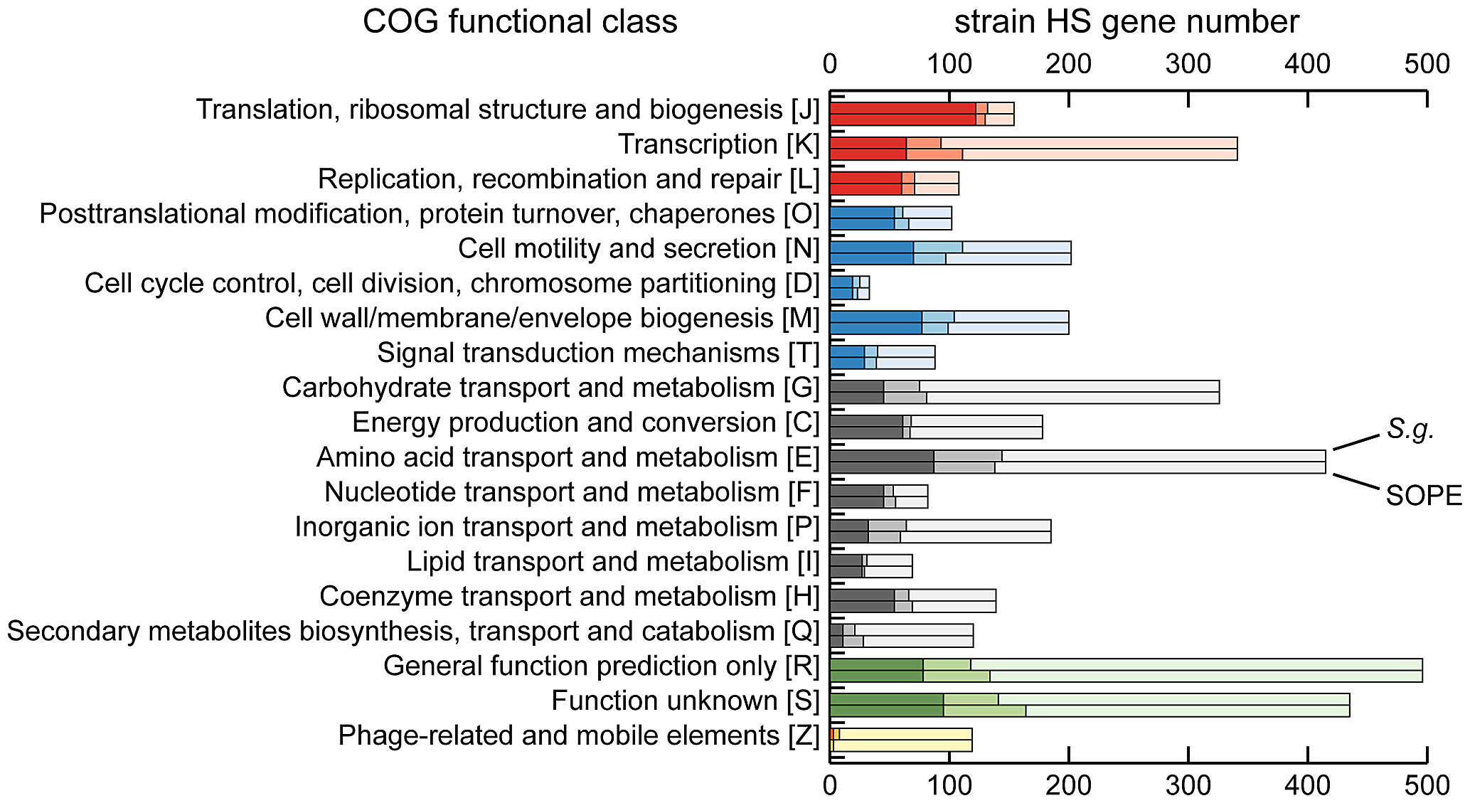 Retention of strain HS orthologs in <i>S. glossinidius</i> and SOPE according to COG functional category.