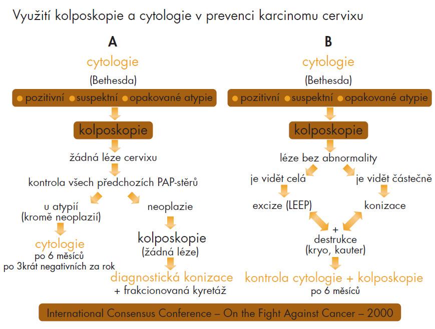 Schéma 2. Osvědčený a doporučený systém prevence carcinomu cervixu.