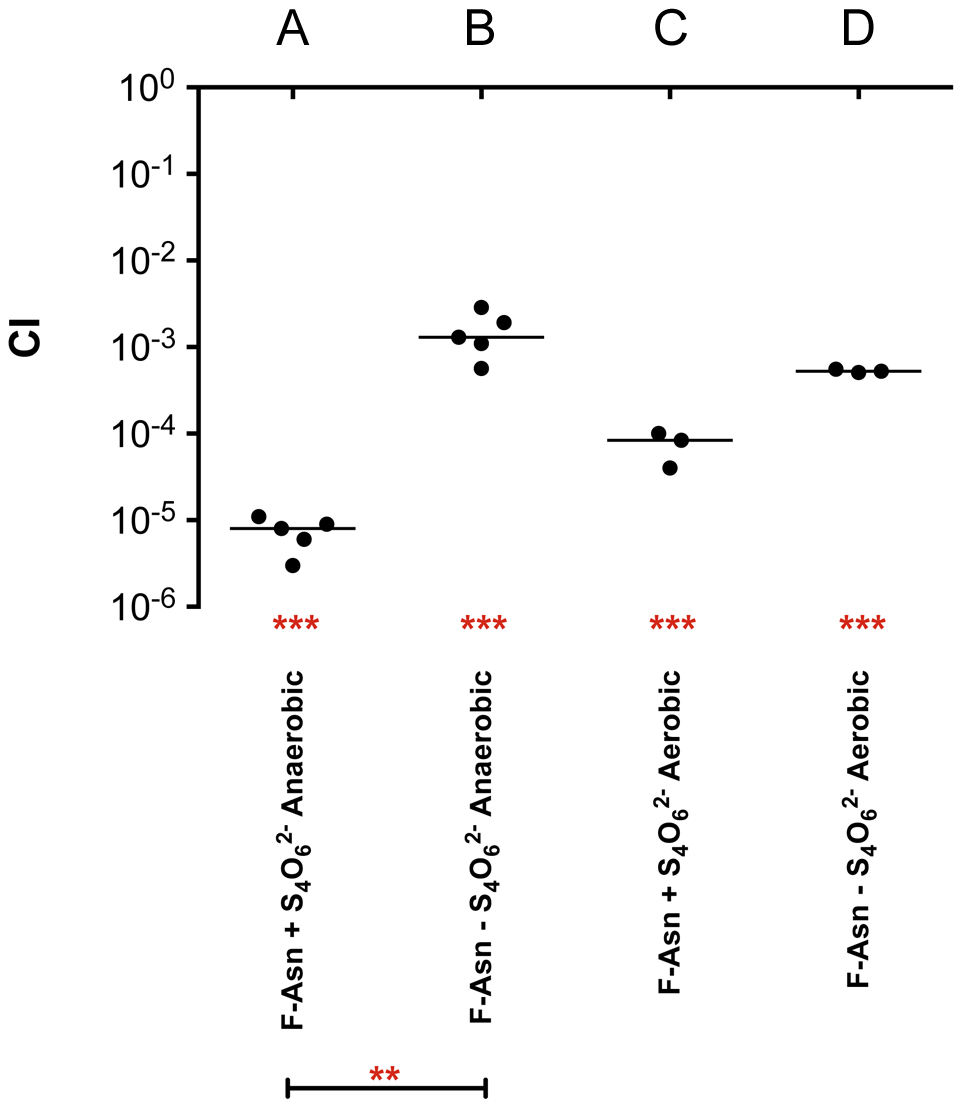Competitive index measurements of a <i>fraB1</i>::kan mutant during <i>in vitro</i> growth.