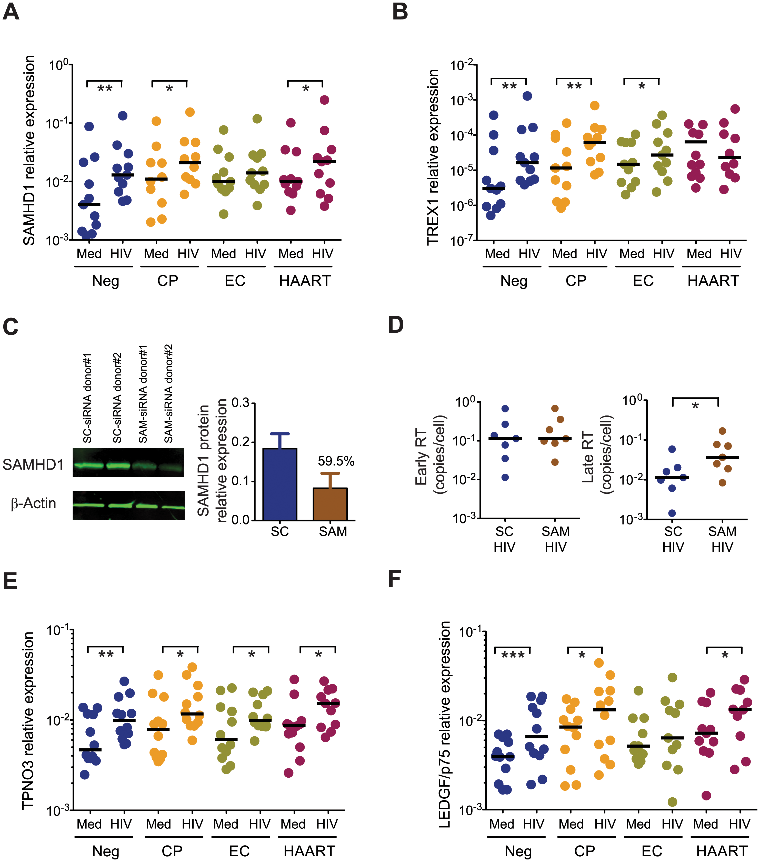 Expression of host restriction factors in cDCs from EC.