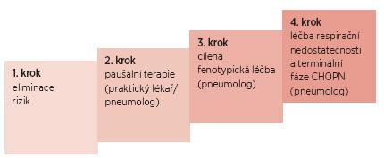 Obr. 4a Čtyři kroky léčebné strategie CHOPN (obecné schéma)