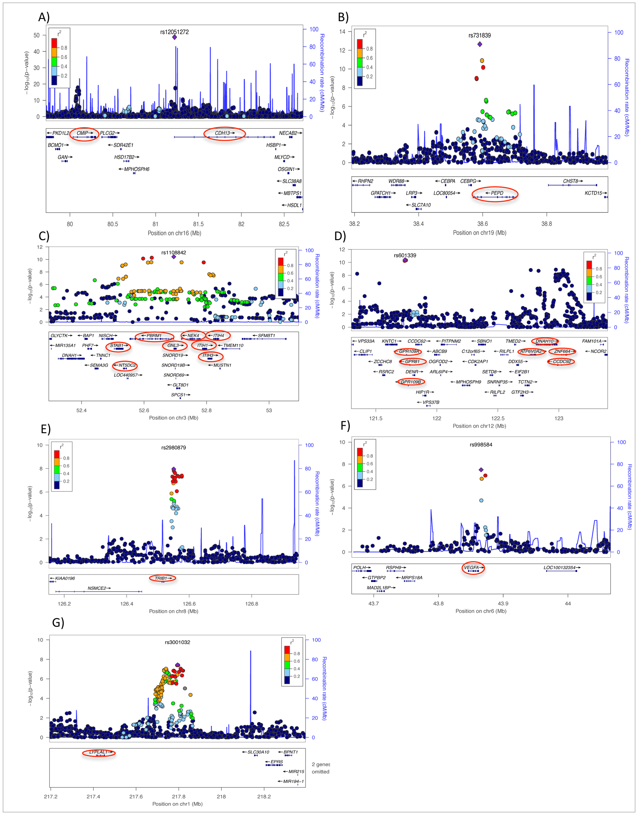 Regional plots of eight newly discovered genome-wide significant chromosomal regions associated with adiponectin concentrations in European populations.