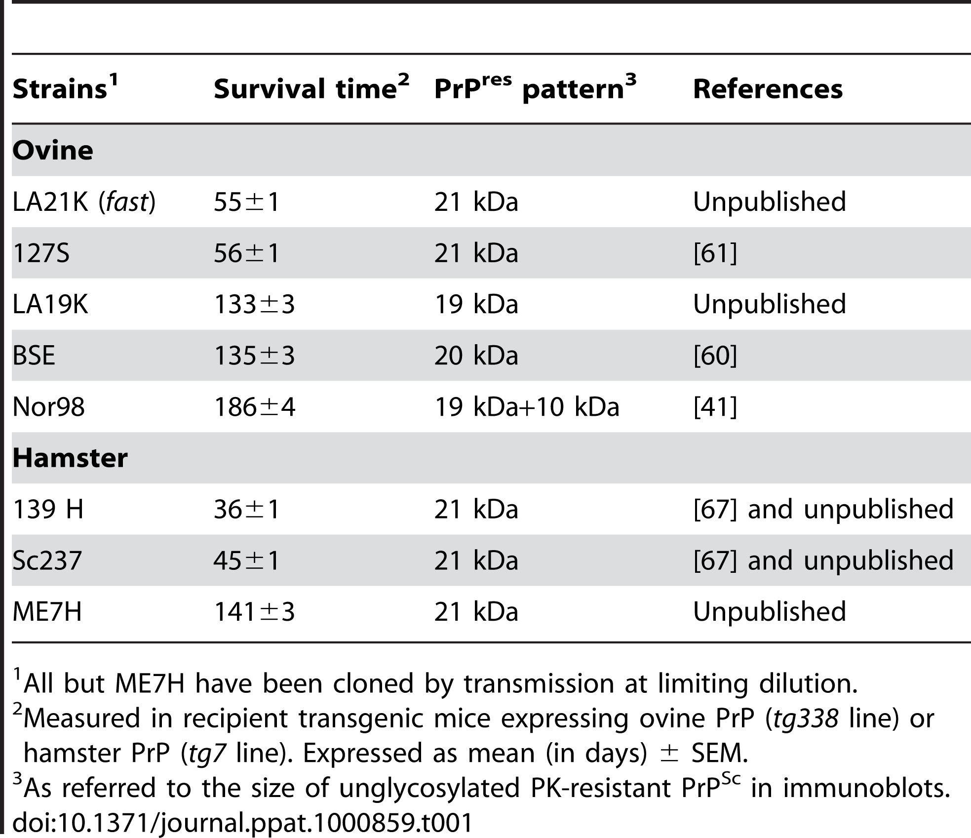 Phenotypic traits of the ovine and hamster prion strains used in the study.