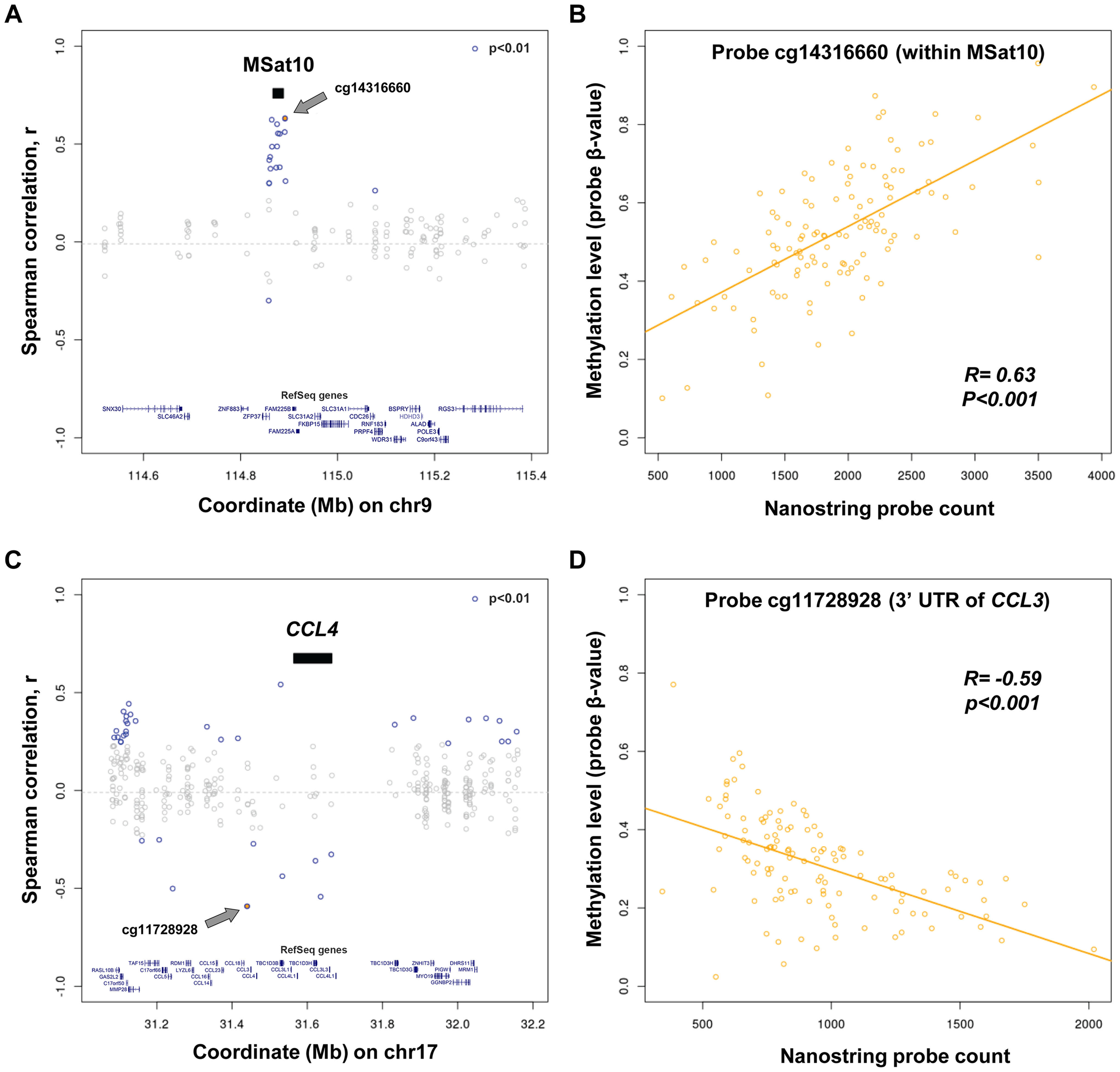 Variation in copy number of tandem repeats and multicopy genes is associated with alterations of local DNA methylation.