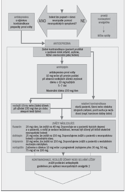 Schéma 3. Guidelines pro aplikaci neuropatických analgetik.