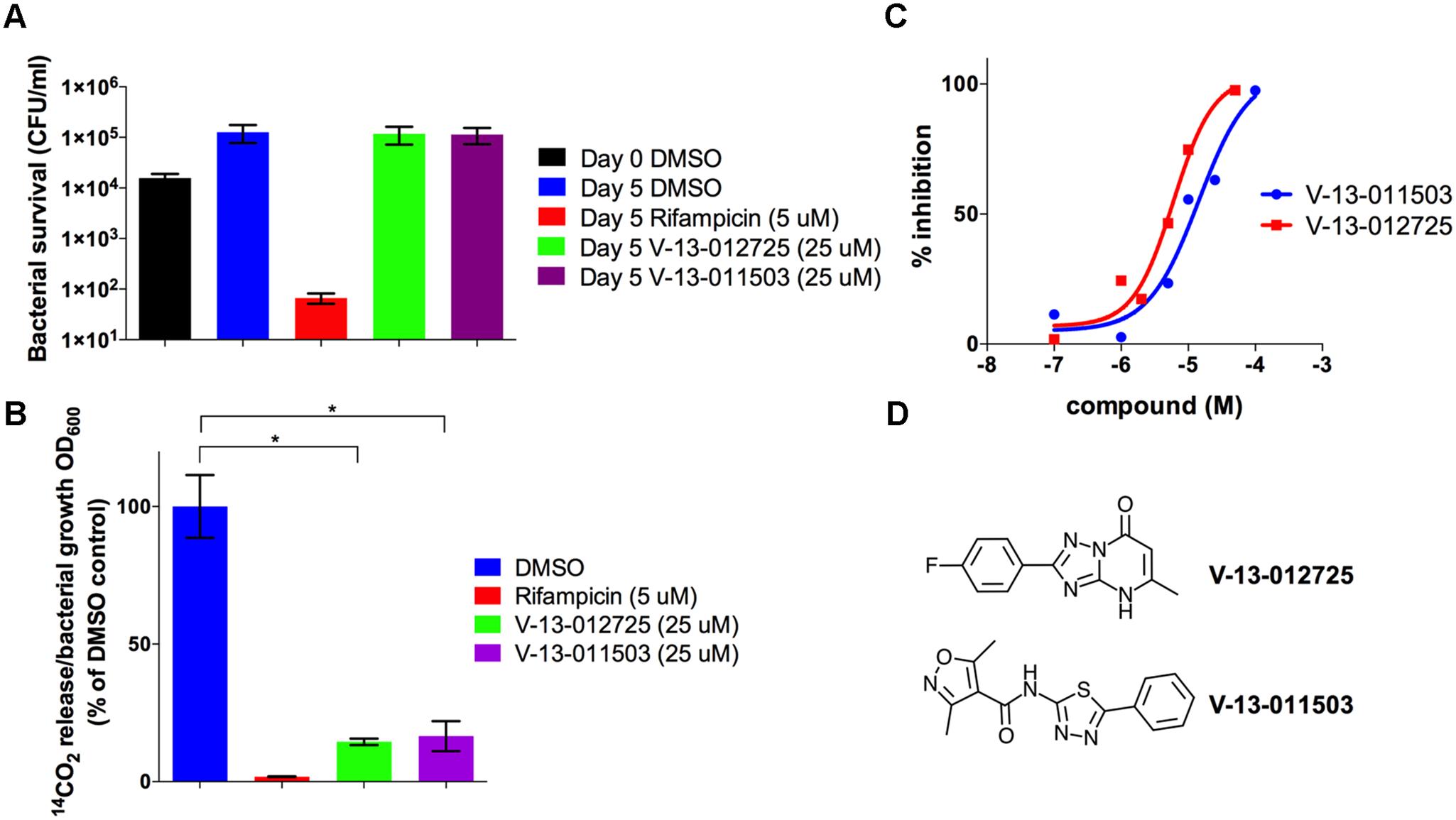 V-13–012725 and V-13–011503 inhibit cholesterol breakdown.