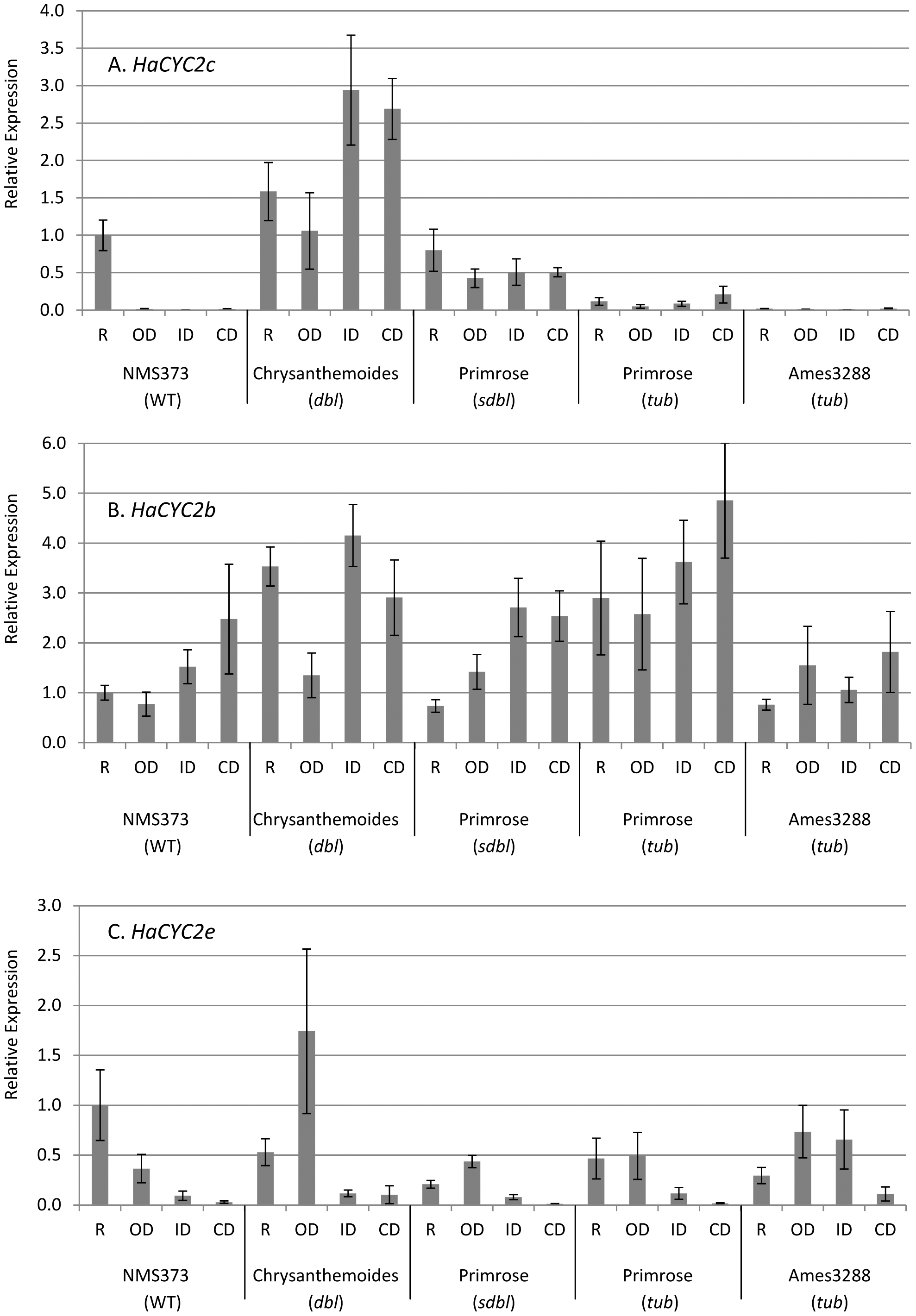 Quantitative RT–PCR results for the expression analysis of <i>HaCYC2c</i> in sunflower.