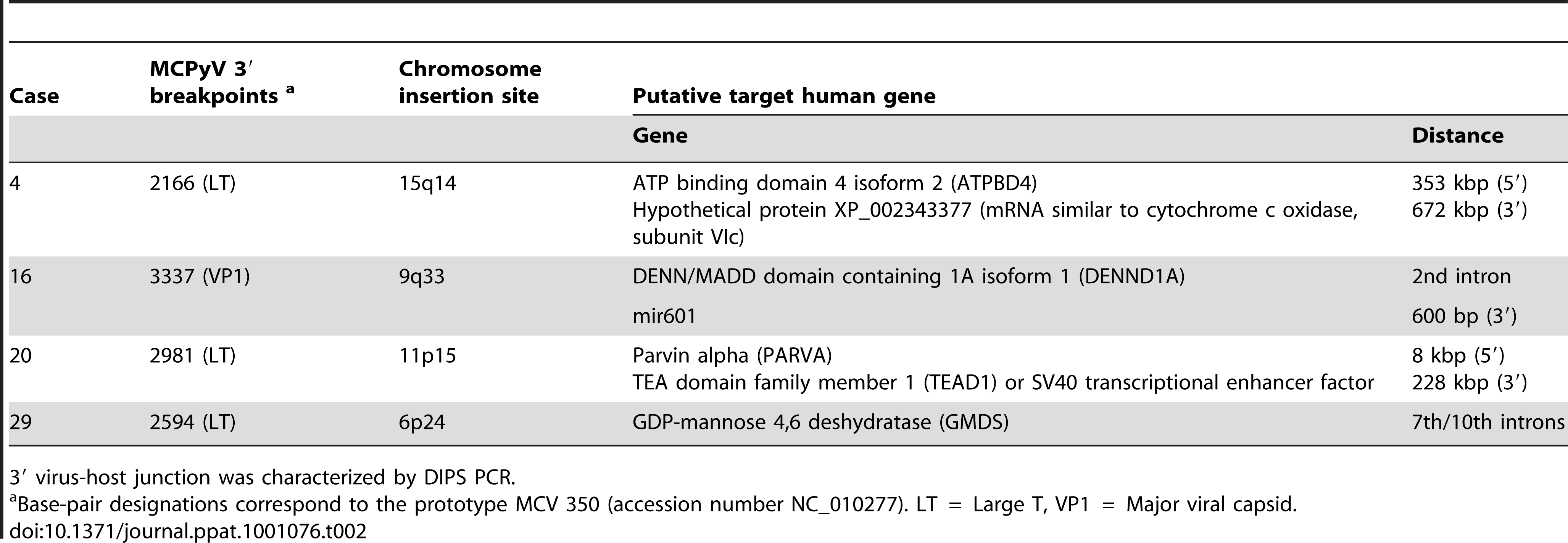 Identification of four novel integration sites of MCPyV DNA in MCC genome.