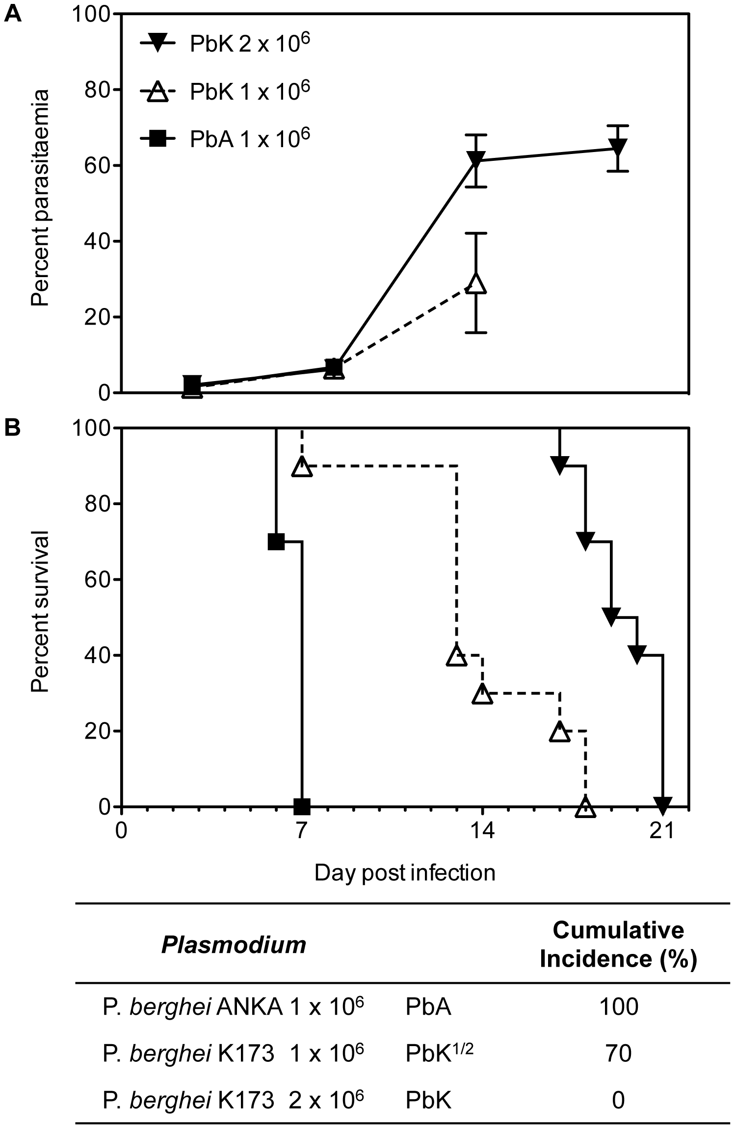Parasitaemia and survival curves of <i>Plasmodium berghei</i>.