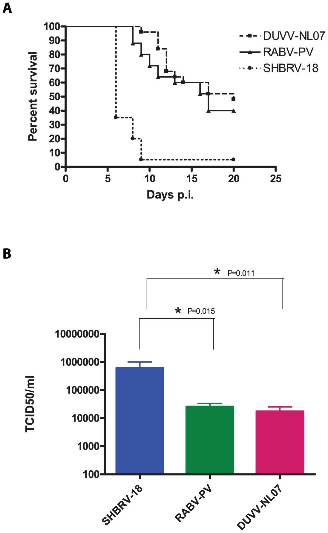 Virulence of lyssaviruses in eight-week old BALB/c mice.