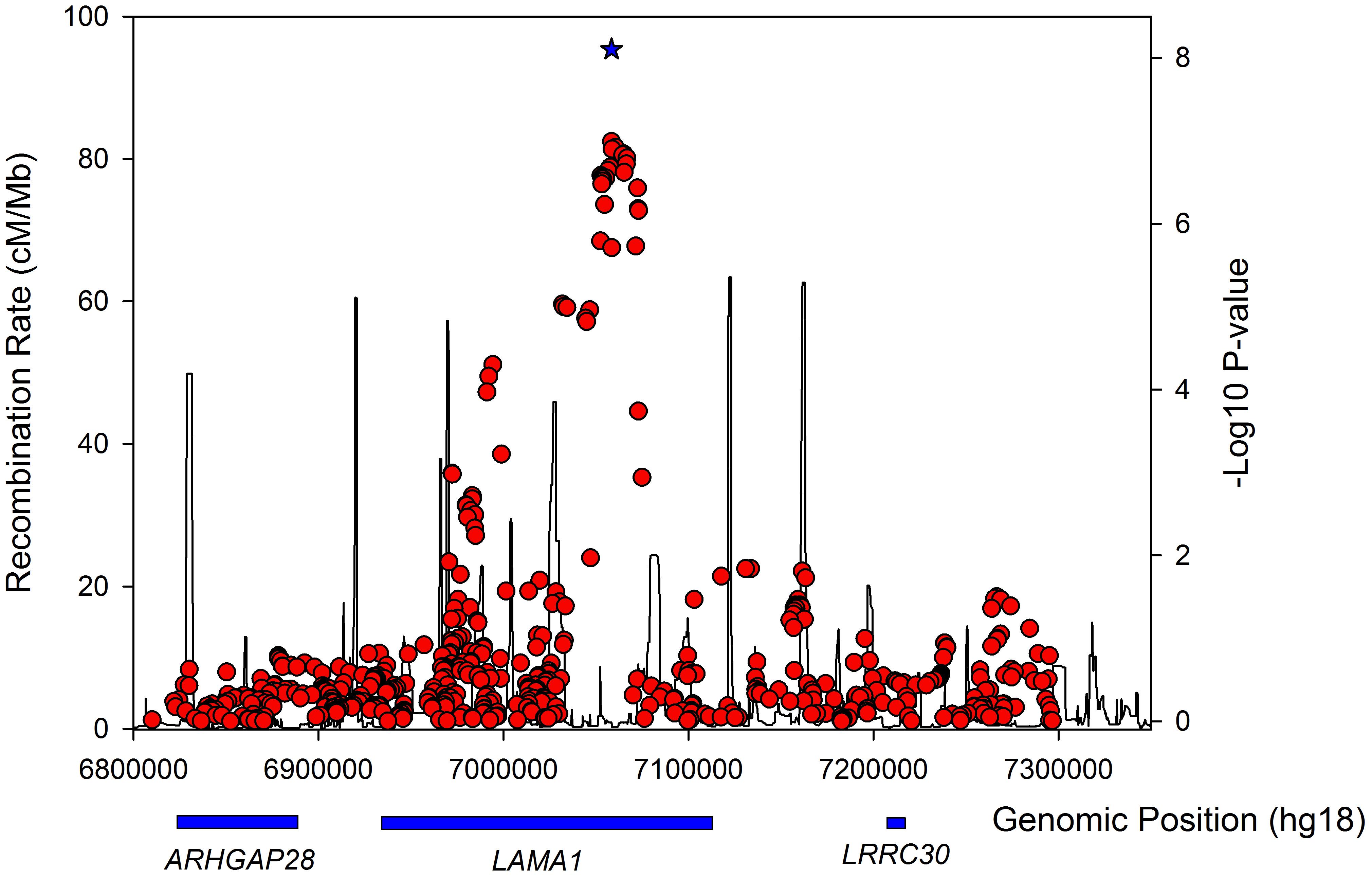 Regional association plot for the <i>LAMA1</i> gene in lean type 2 diabetes samples.