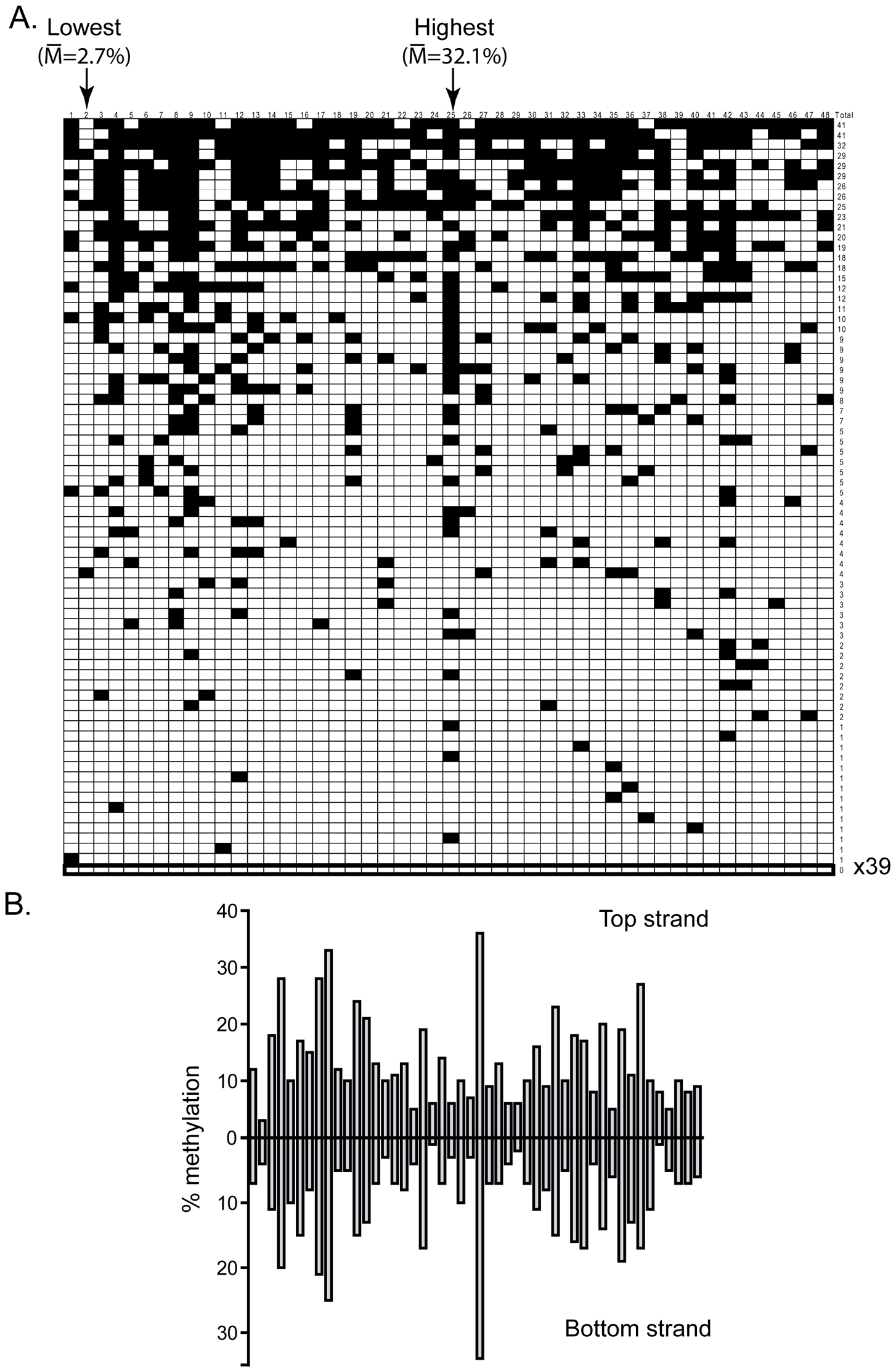 DNMT3B shows significant sequence preference distinct from DNMT3A.