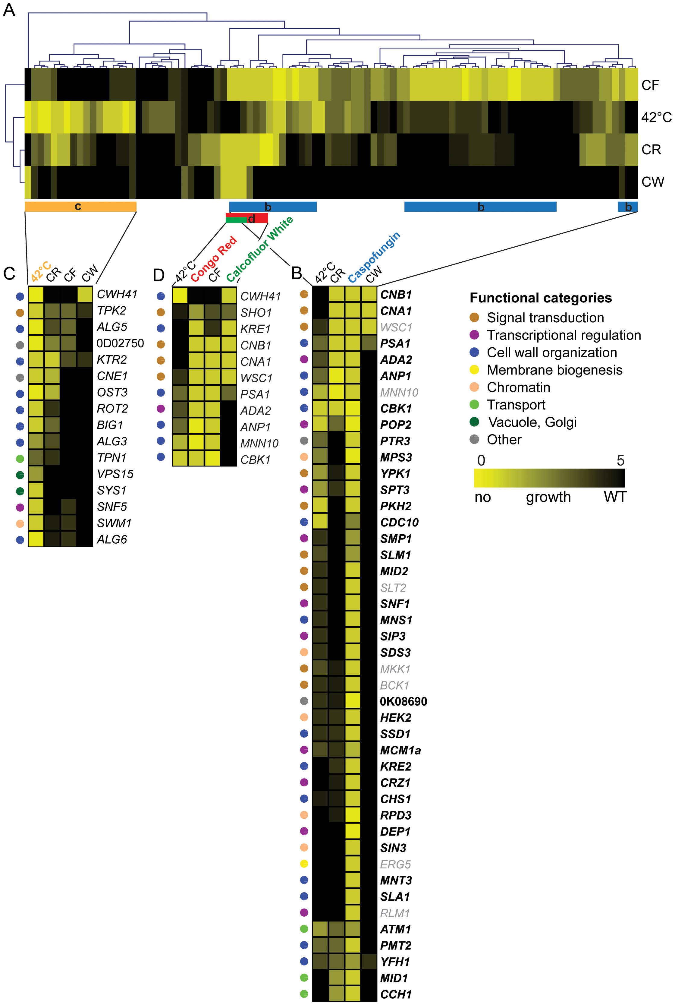 Clustering of susceptibility data of the <i>C. glabrata</i> gene deletion collection.