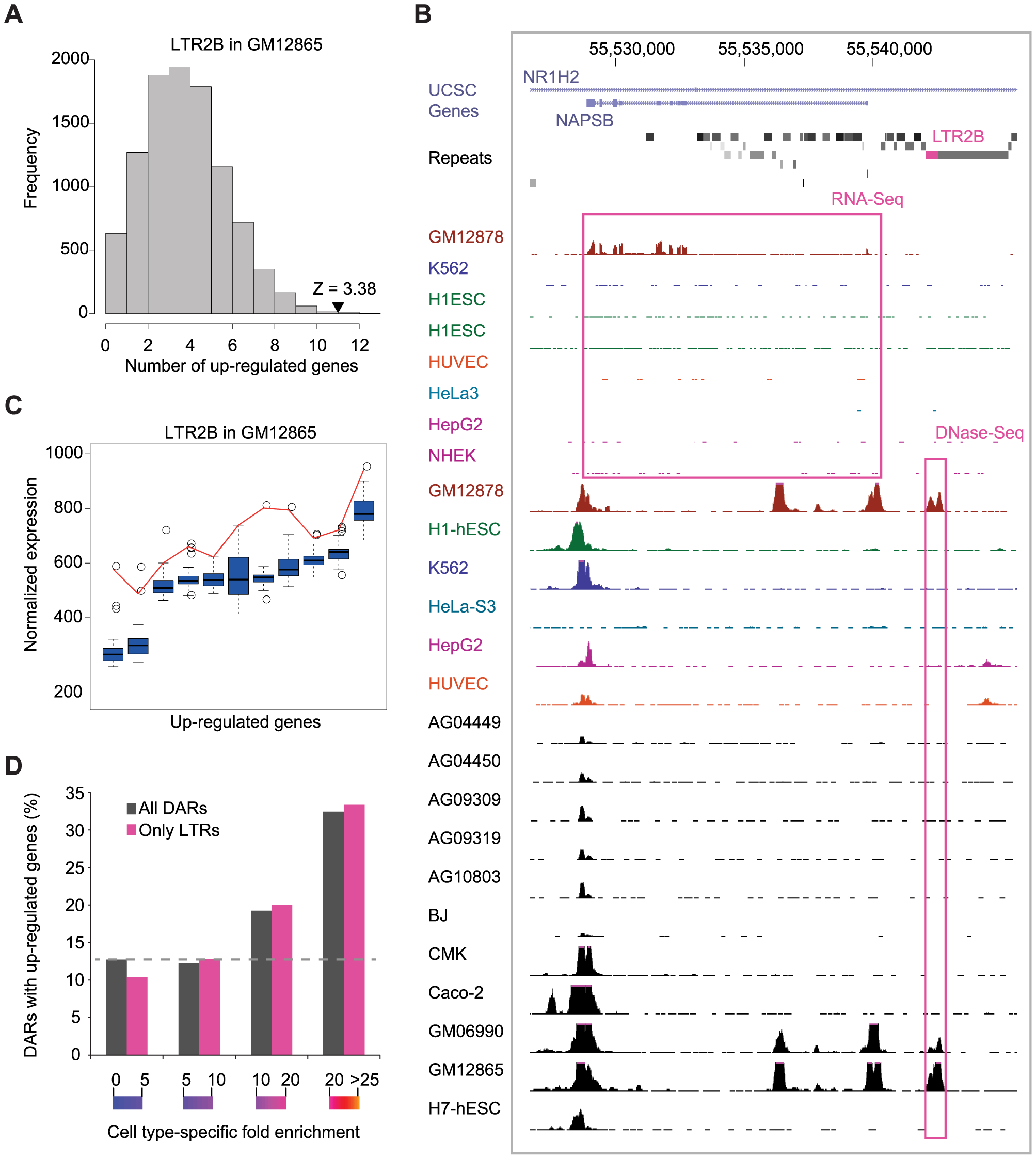 Cell type–specific expression of DAR–associated genes.
