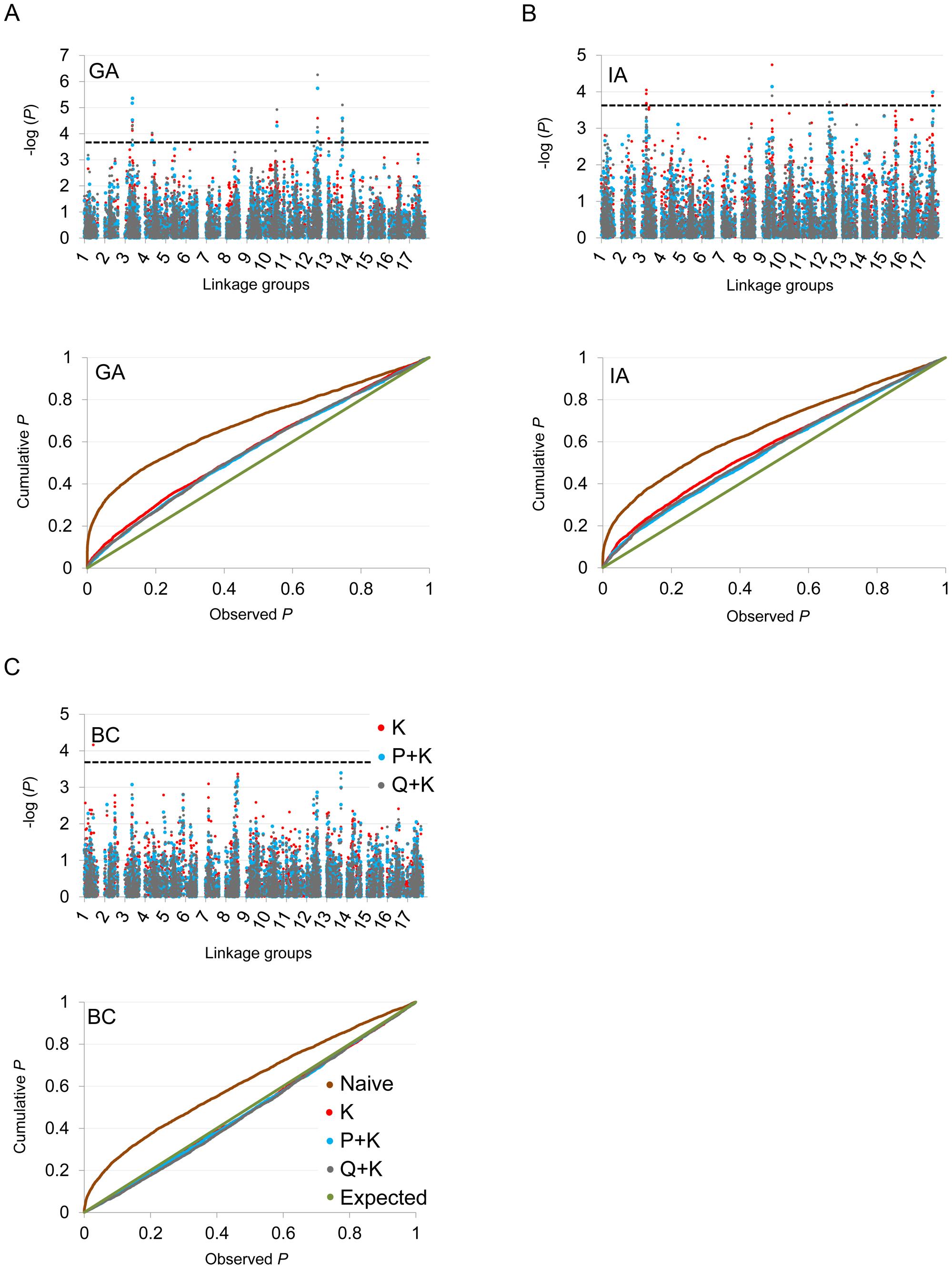 Manhattan and quantile–quantile plots of flowering time associations.