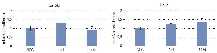 Stanovení proliferace u buněčných líní Ca Ski a HeLa. Celkem 24 hod po transfekci byly buňky barveny pomocí krystalové violeti s následným spektrofotometrickým stanovením intenzity fialového zbarvení, které je přímo úměrné množství buněk.