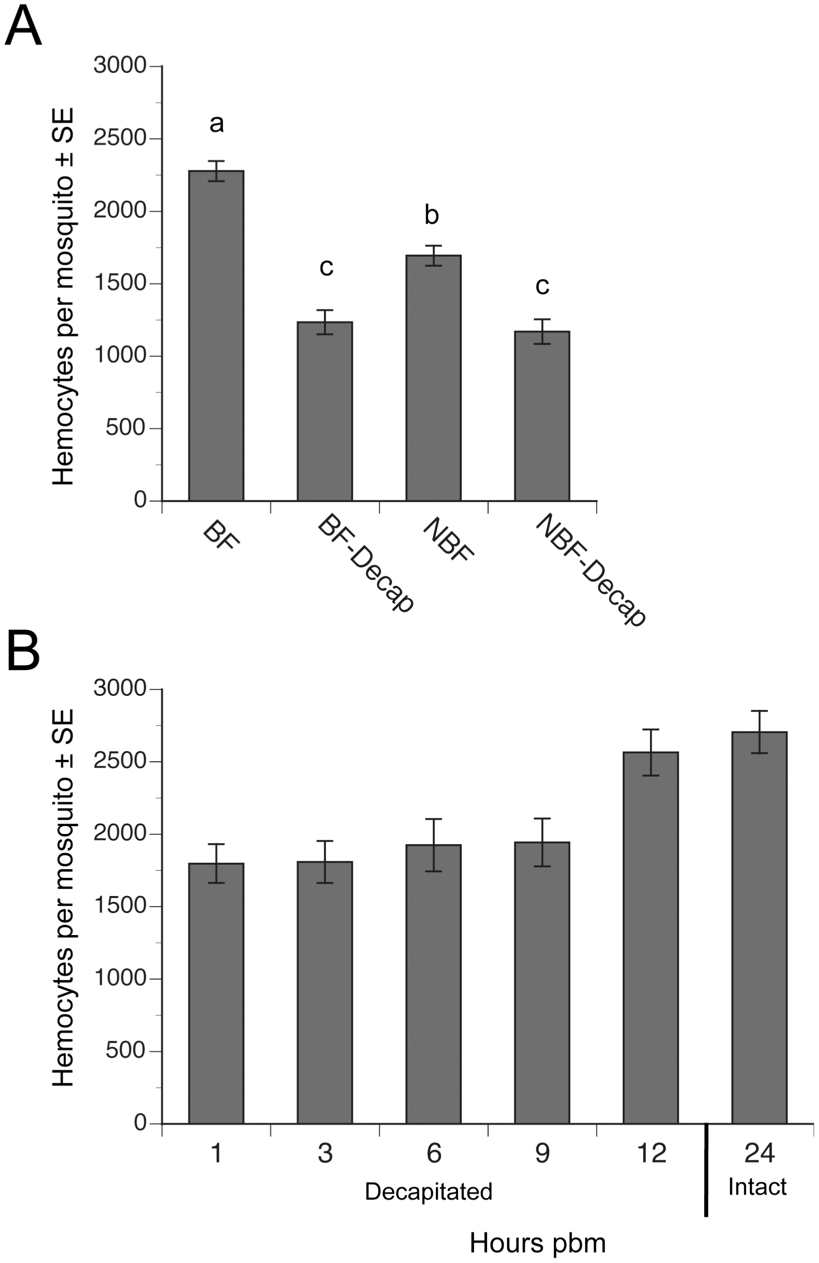 Decapitation inhibits the increase in hemocyte abundance that occurs after blood feeding.