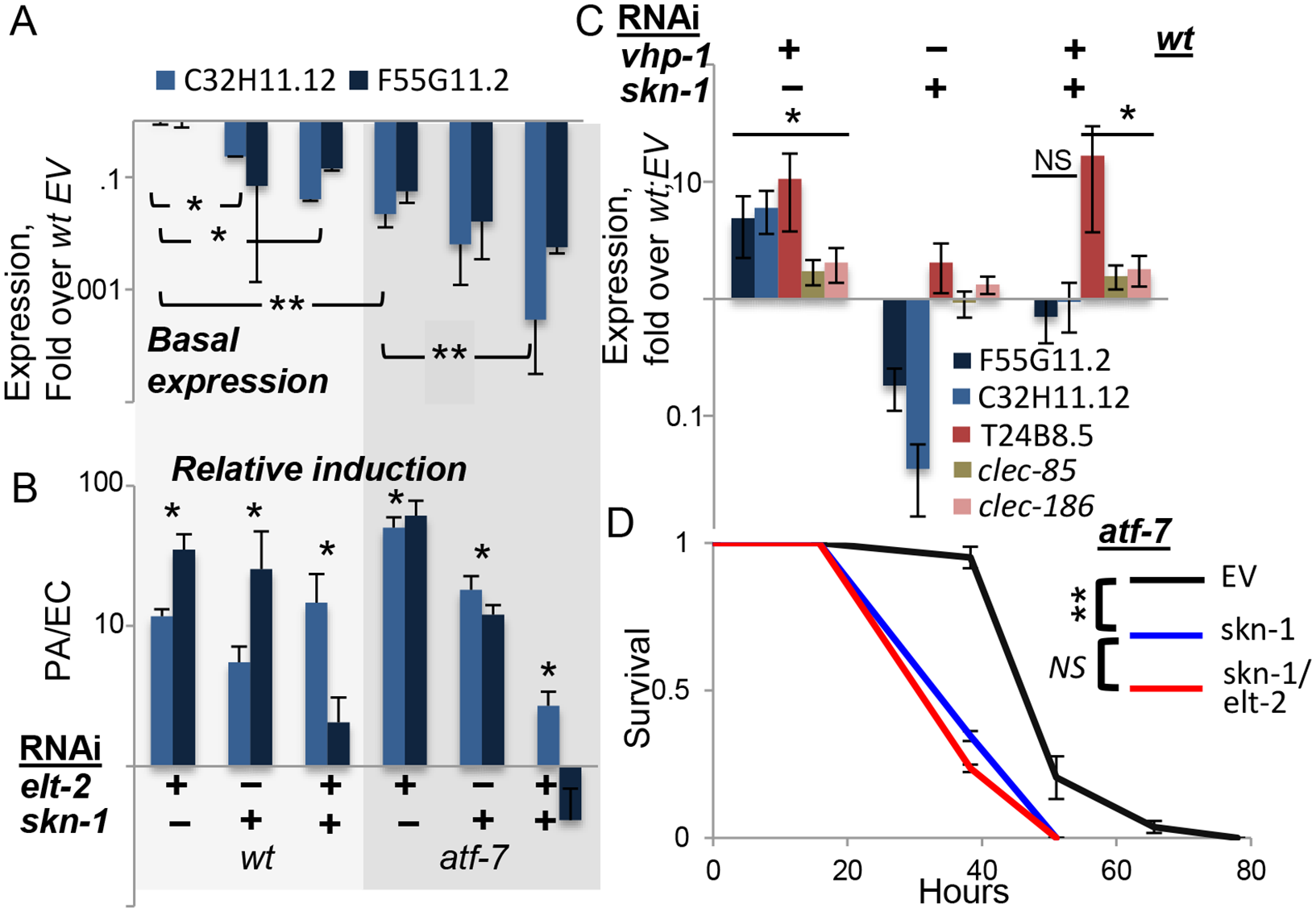 <i>skn-1</i> co-regulates gene expression with <i>atf-7</i> and <i>elt-2</i>.