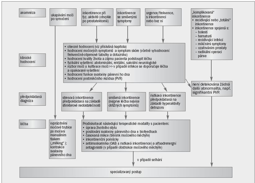 Schéma 1. Algoritmus pro primární postup při řešení močové inkontinence u mužů.