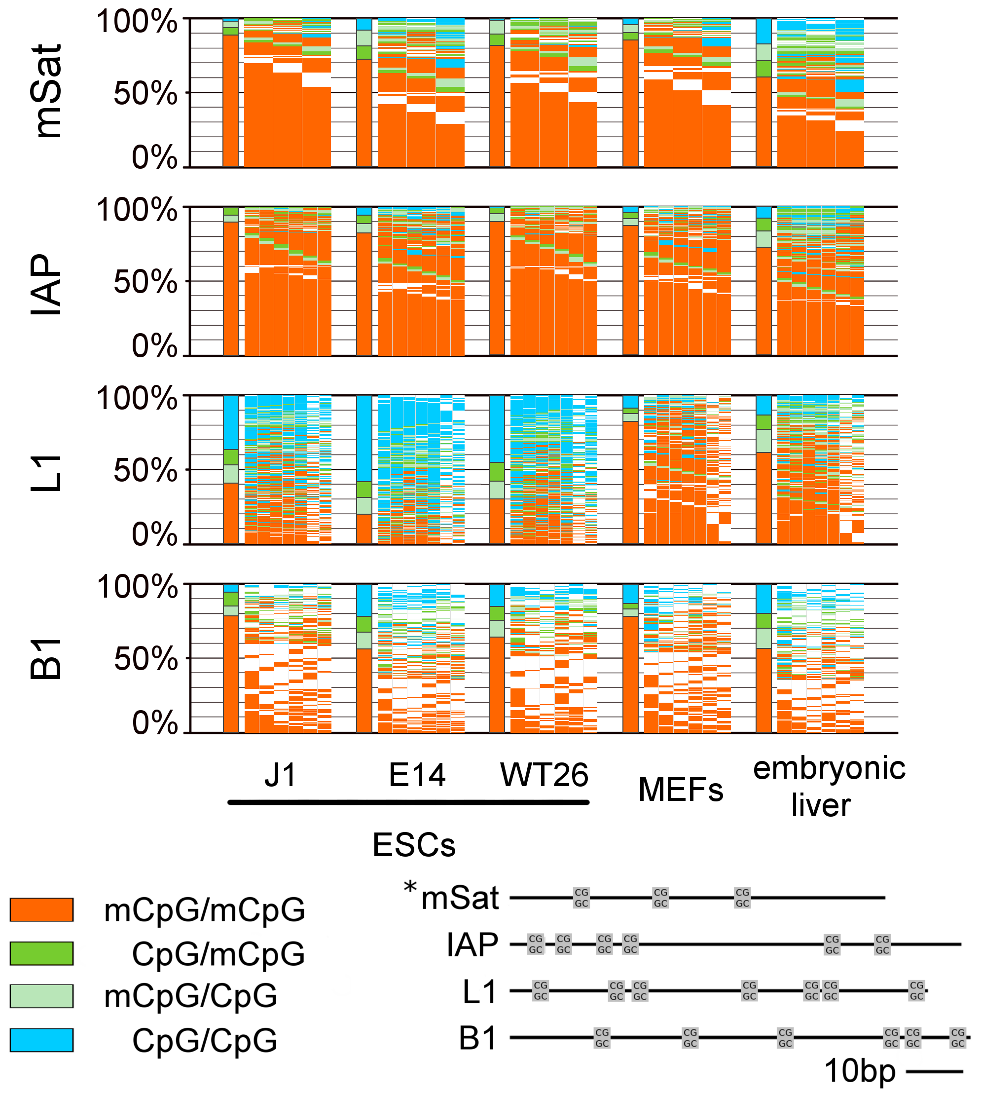 DNA methylation pattern of CpG dyads at repetitive elements in WT ESCs, MEFs, and embryonic liver.