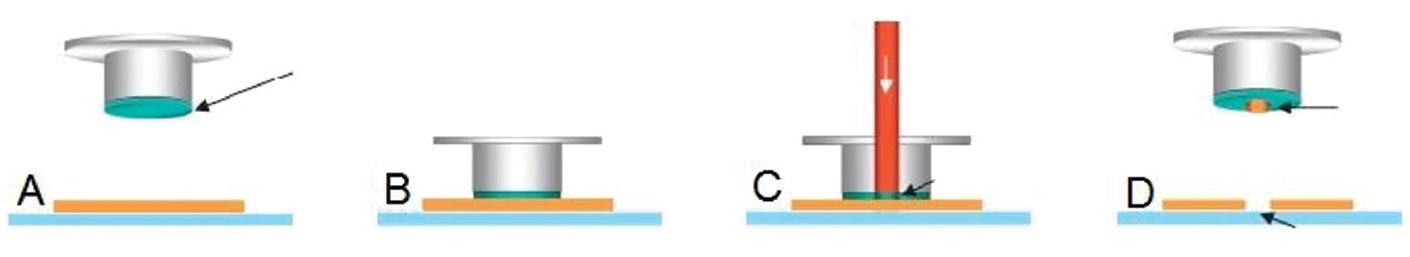 Mikrodisekce s použitím termoplastické membrány. A: Víčko s termoplastickou membránou, která je označena šipkou. B: Víčko je umístěno nad oblast preparátu určenou k mikrodisekci. C: Termoplastická membrána je aktivována laserovým paprskem v místě mikrodisekované tkáně. D: Mikrodisekovaná tkáň je zachycena na membráně víčka, v tomto místě zůstává v preparátu prázdná oblast. Upraveno podle (17).