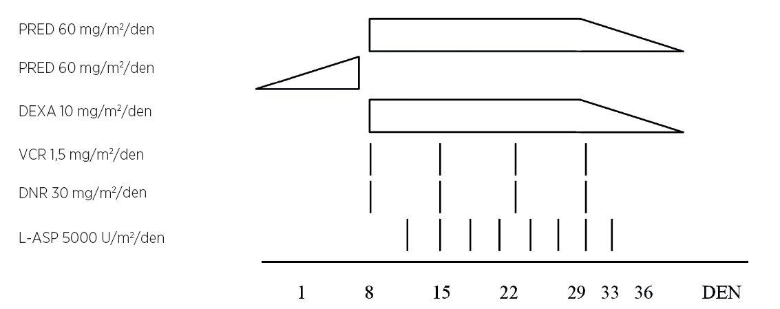 Randomizovaná studie AEIOP – BFM-ALL 2000 (upraveno podle Schrappe et al., 2008).