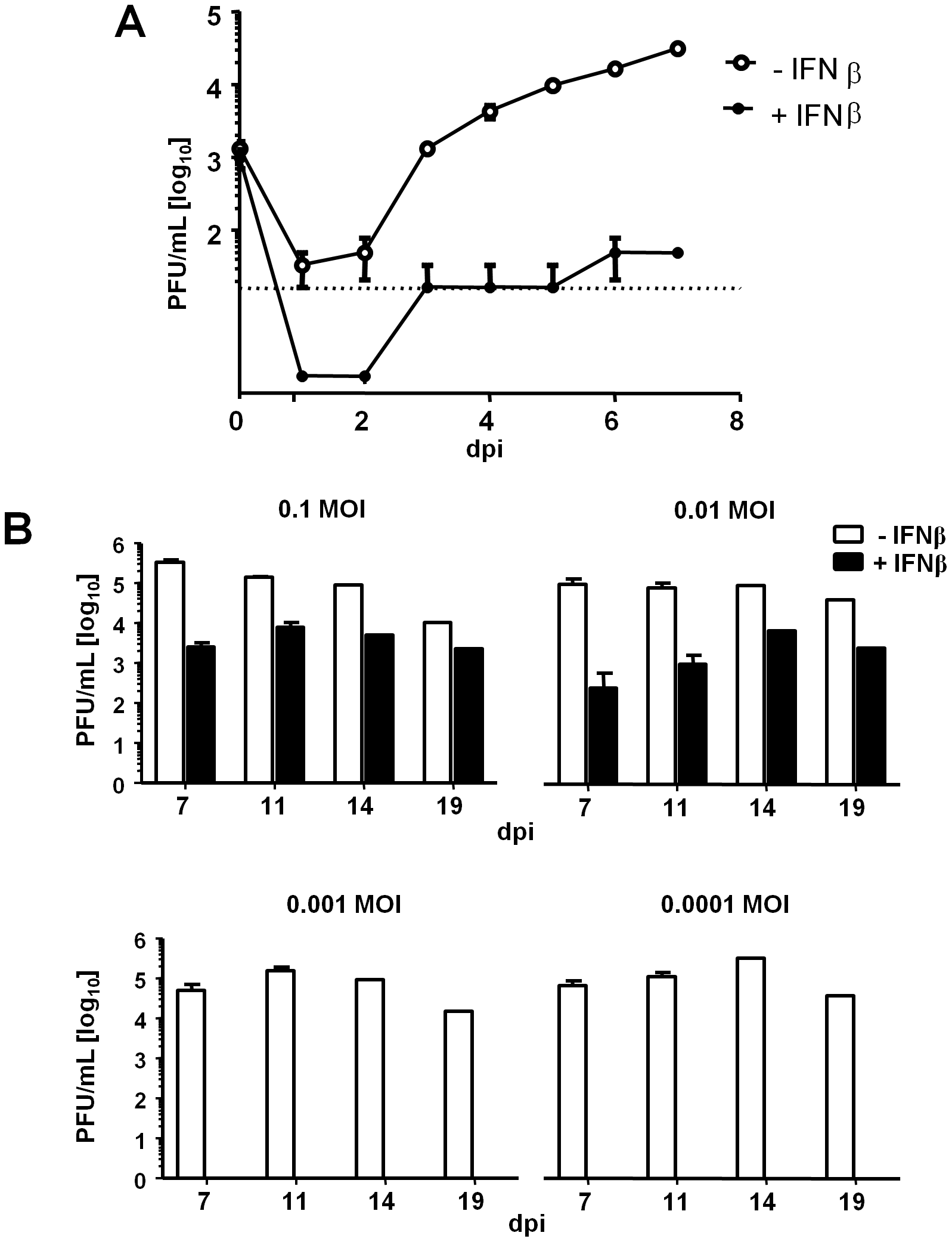 IFNβ restricts MCMV replication in LSECs.