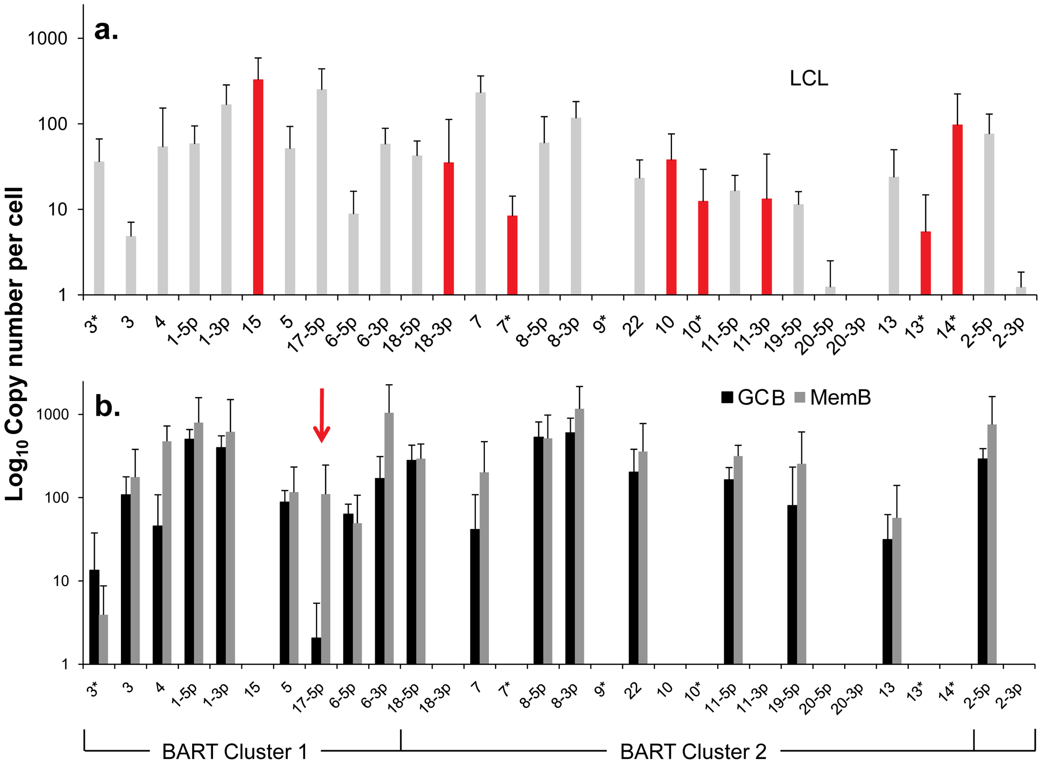 Profile of EBV BART miRNAs in vivo and in spontaneous lymphoblastoid cell lines (LCL) expressing latency III.