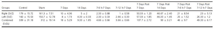 Table 1. Absolute neurosphere number/condition after plating cells in culture for 8 days.