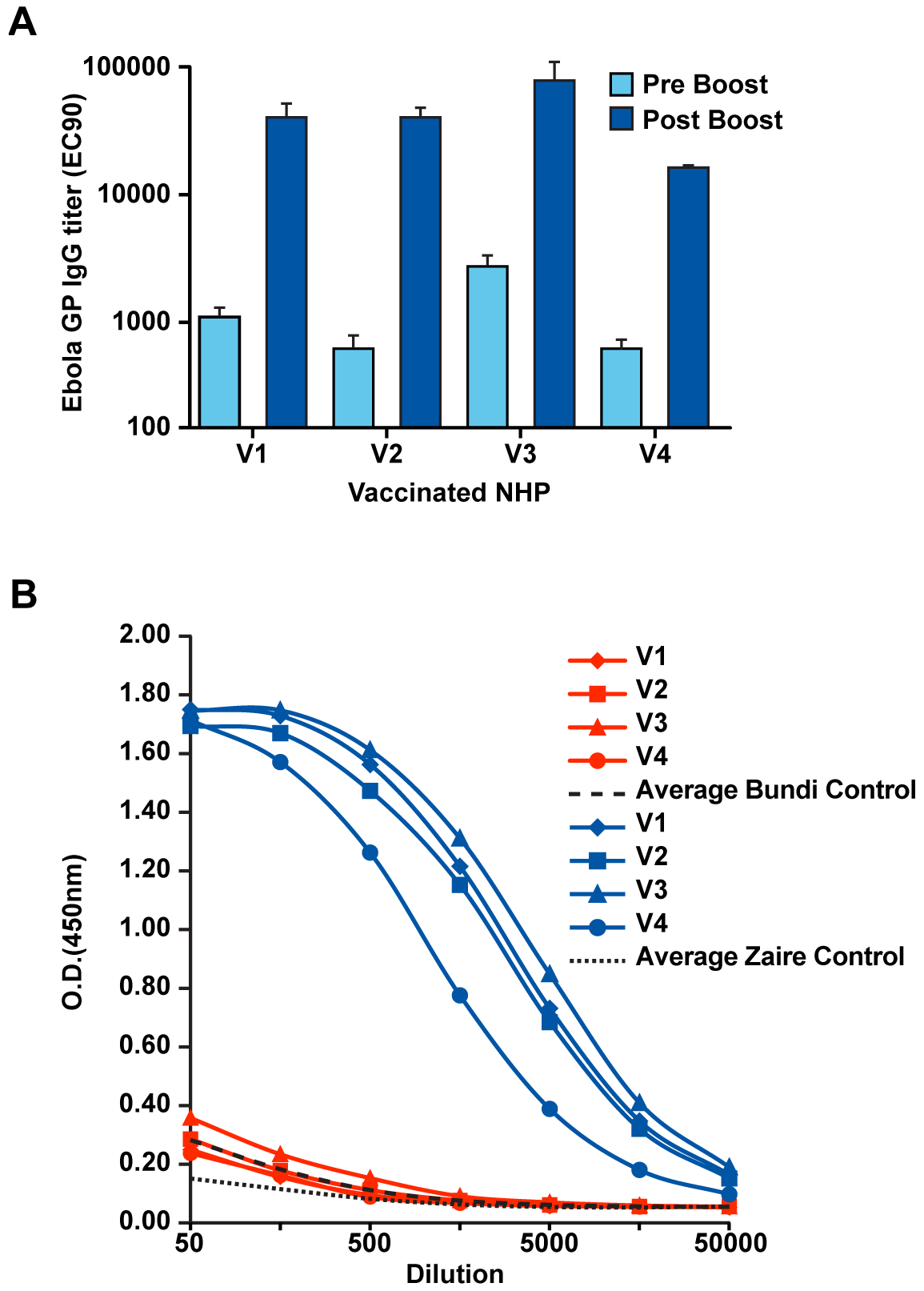 Development of vaccine-induced antibody responses.