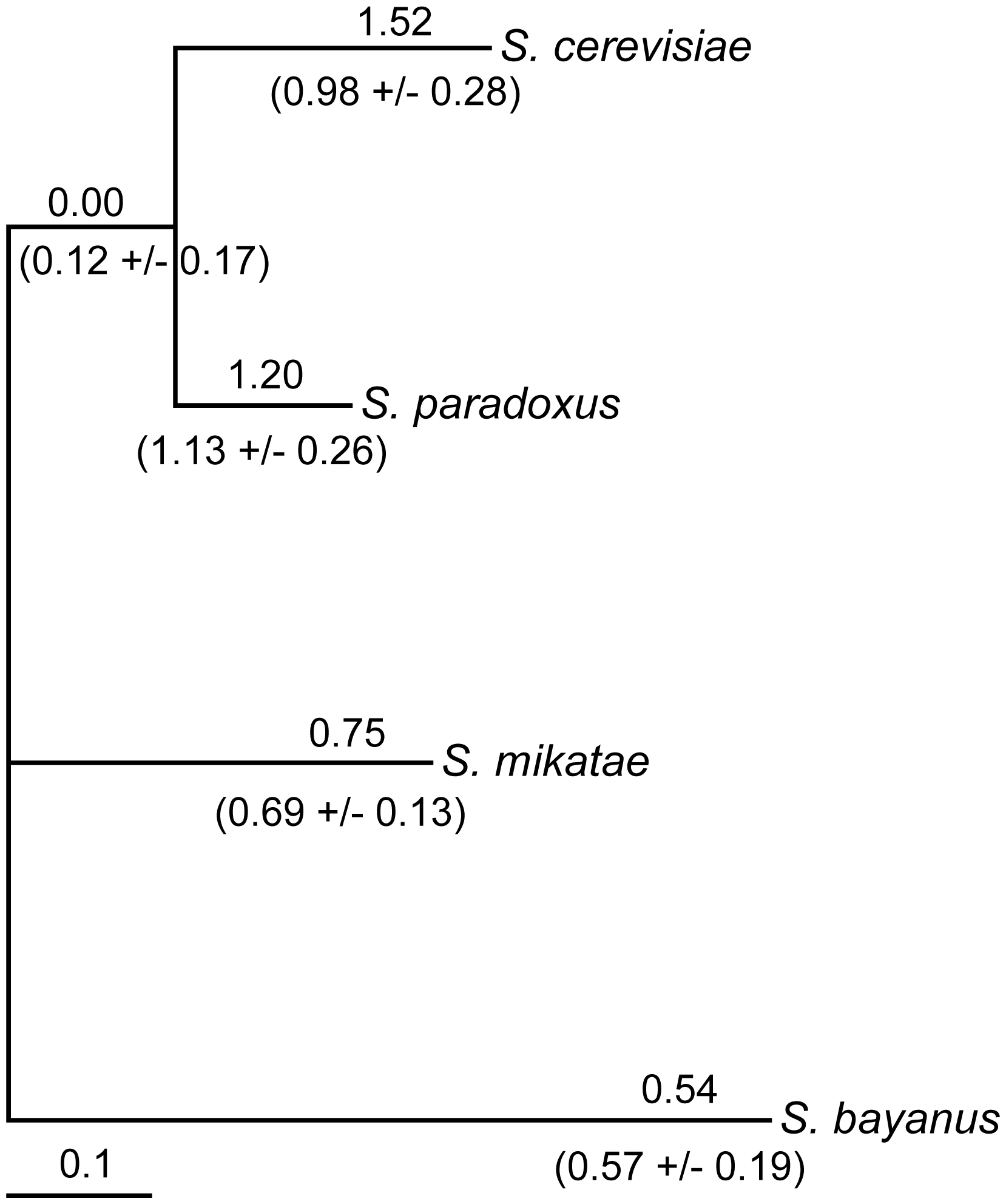 Variation in noncoding substitution rates upstream of <i>FZF1</i>.