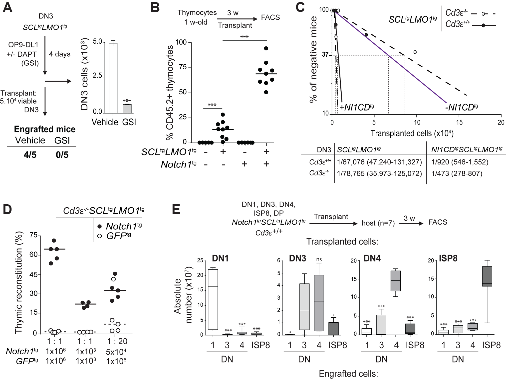 Notch1 collaborates with SCL-LMO1 to increase the pool of pre-LSCs and their competitiveness independently of a functional pre-TCR.