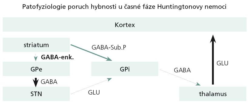 Postižení bazálních ganglií ve velmi časných fázích HN.