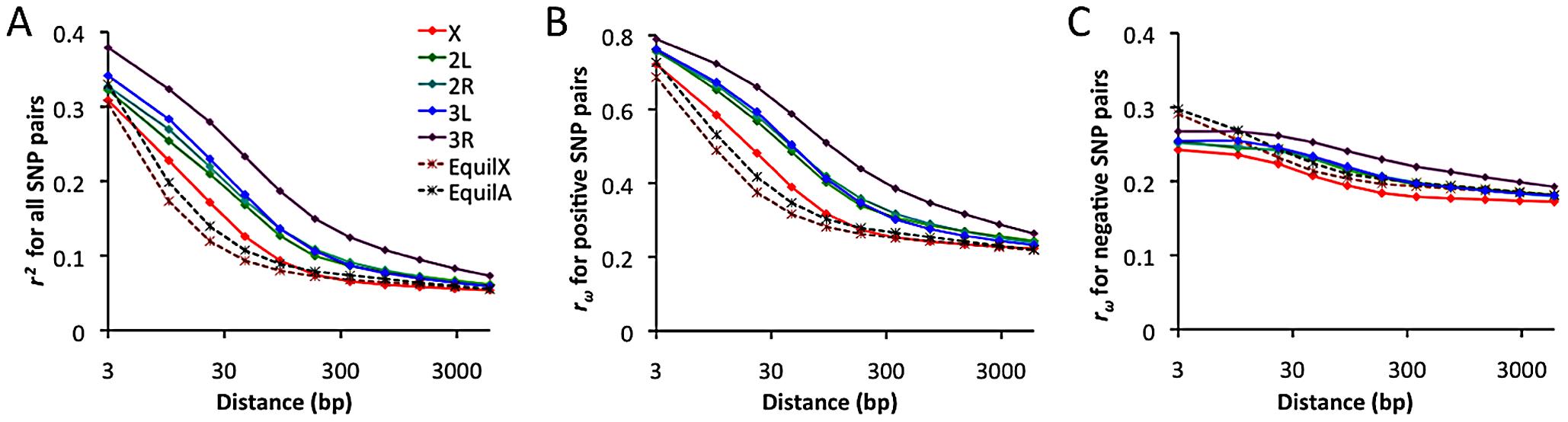 Linkage disequilibrium (LD), excluding singleton polymorphisms.
