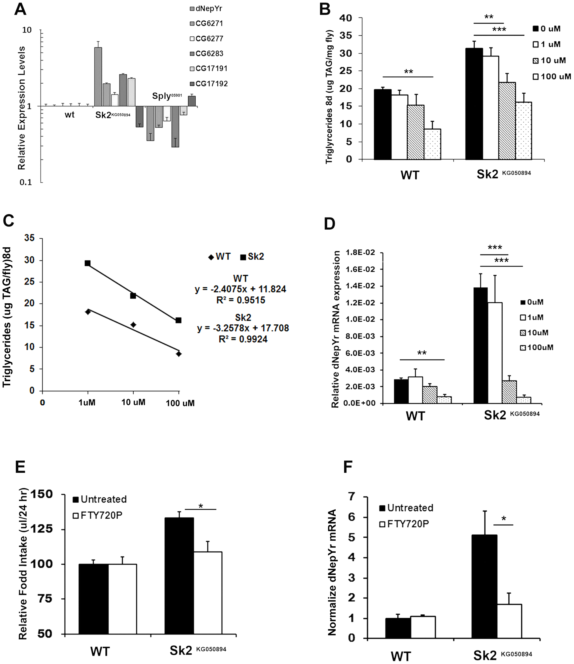The ceramide:S1P rheostat's role in regulating <i>dNepYr</i> expression and caloric intake.