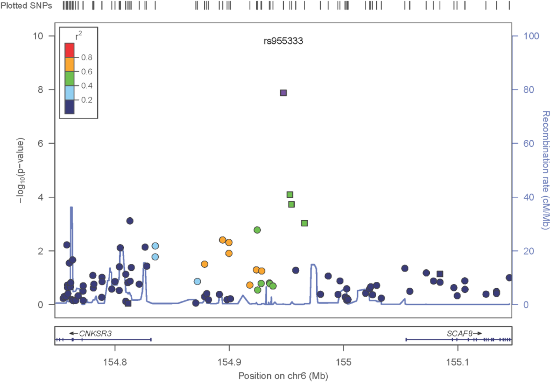 Zoom plot of the <i>SCAF8</i> gene region (trans-ancestry meta-analysis across Discovery and Replication samples).