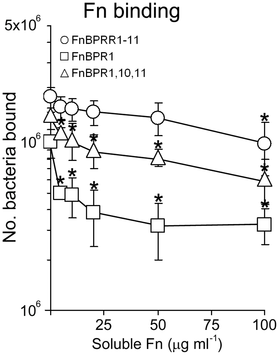 Full length FnBPA facilitates adhesion to immobilized Fn in the presence of soluble Fn.