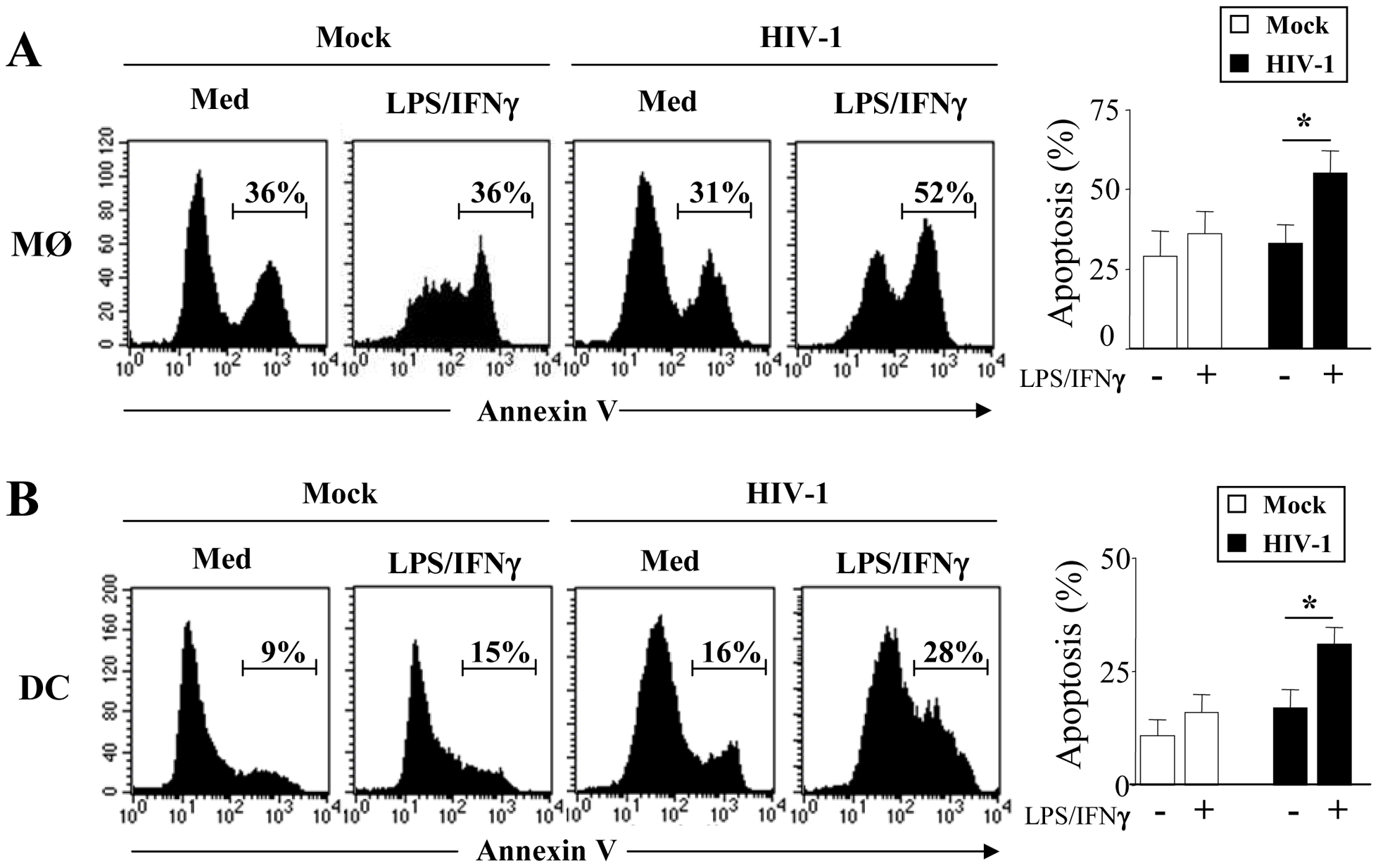 HIV-1 infected monocyte-derived macrophages and monocyte-derived DCs undergo apoptosis after stimulation.