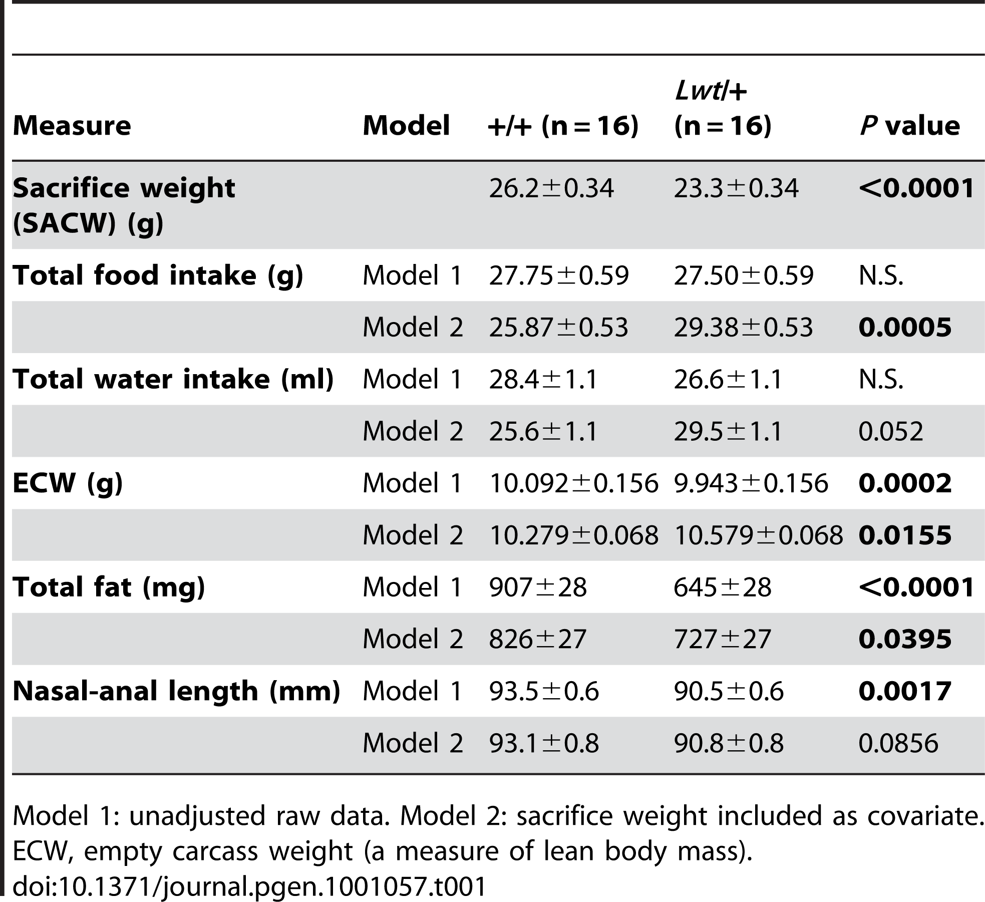 Body composition and food and water consumption of male +/+ and <i>Lwt</i>/+ mice (value ± SEM).