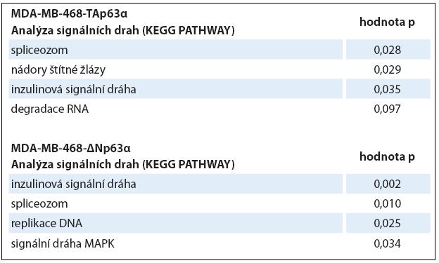 Analýza signálních drah (KEGG PATHWAYS).