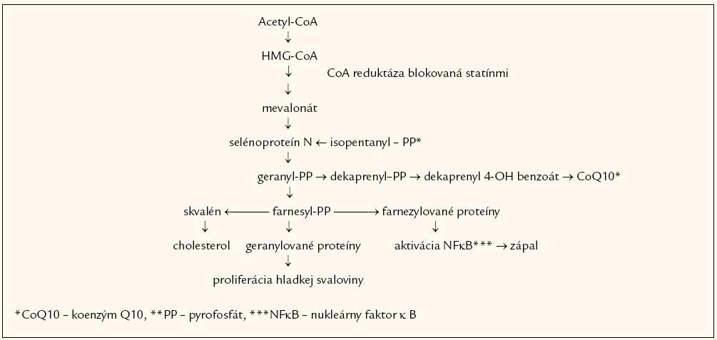 Metabolická cesta syntézy cholesterolu, koenzýmu Q10, zápalových a proliferačne pôsobiacich proteínov.