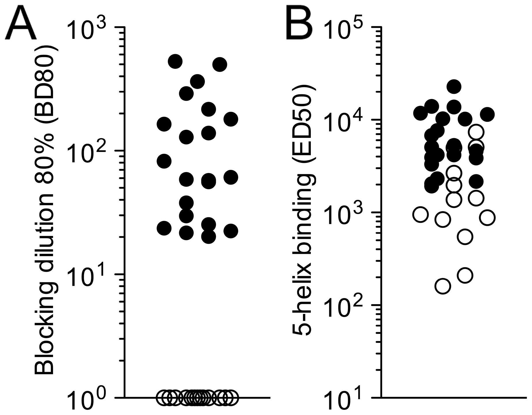 Detection of HK20-like antibodies in patient sera.