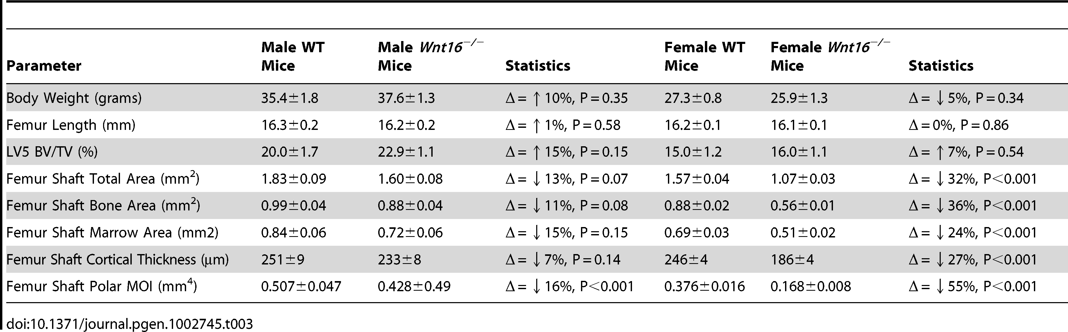 Body weight, femoral length, and MicroCT data in <i>Wnt16<sup>−/−</sup></i> mice, males (WT=9; <i>Wnt16<sup>−/−</sup></i>=11) and females (WT=24, <i>Wnt16<sup>−/−</sup></i>=16).